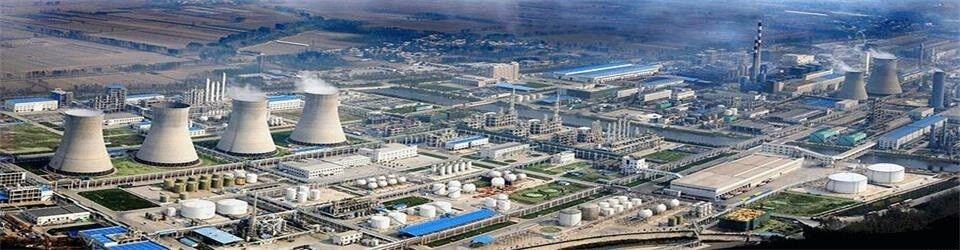 Shandong Jinyimeng Group Co. Ltd.